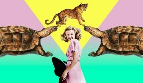 На фото девушка в окружении зверей