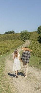 Фото, где парень с девушкой идущие по дороге и разговаривают на английском языке